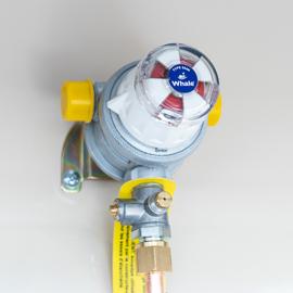 Auto Changeover Gas Regulator